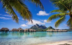 Compra Subito #VacanzeTurismo : Agenzia Viaggi Tour Operator – www.22viaggi.com