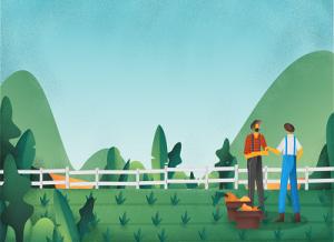 Compra Subito #Agricoltura : *** Per Aziende Agricole – GREEN AGRICOLTURA *** – Prodotti e Servizi – Marche-Ascoli-Piceno-AP-63082-Castel di Lama – www.greenagricoltura.it